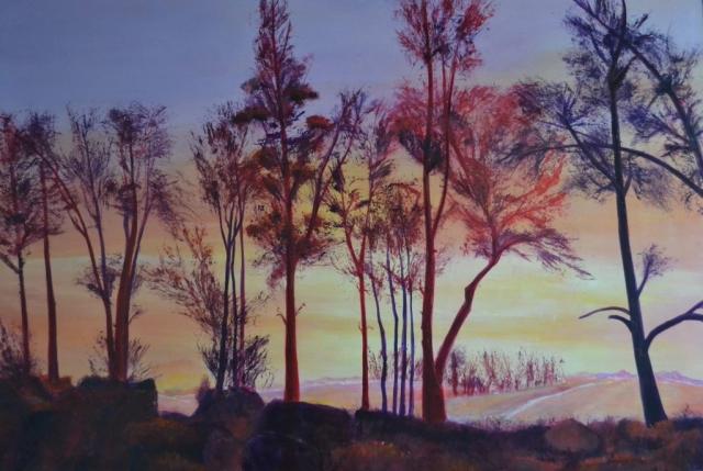 Anna Troost, het rode bos