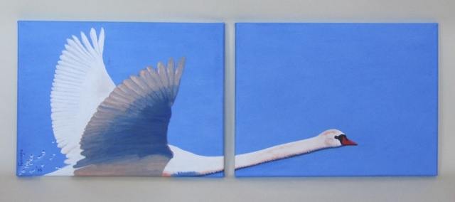 Fenneke Stegehuis, Art Callantsoog