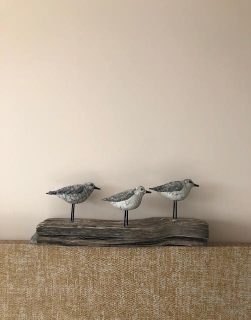 Art Callantsoog, Susan Tijm
